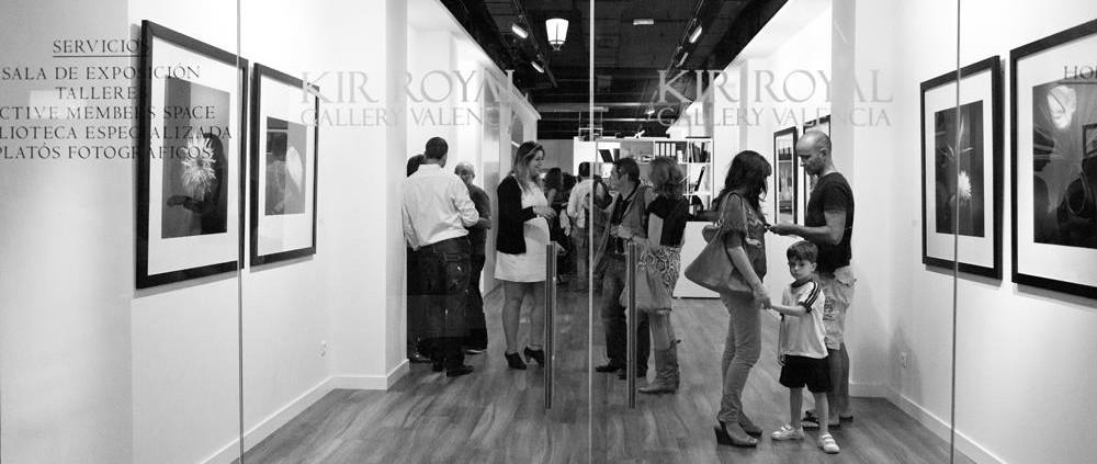vernon trent exhibition still lifes and nudes kir royal valencia
