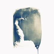 Joceline - Cyanotype © Vernon Trent
